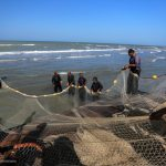 غروب رنگین کمان ماهیان خزری/حذف تدریجی گونه های نادر آبزی